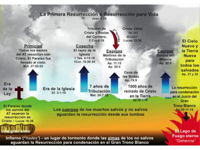 FIRST RESURRECTION CHART SPANISH.jpg